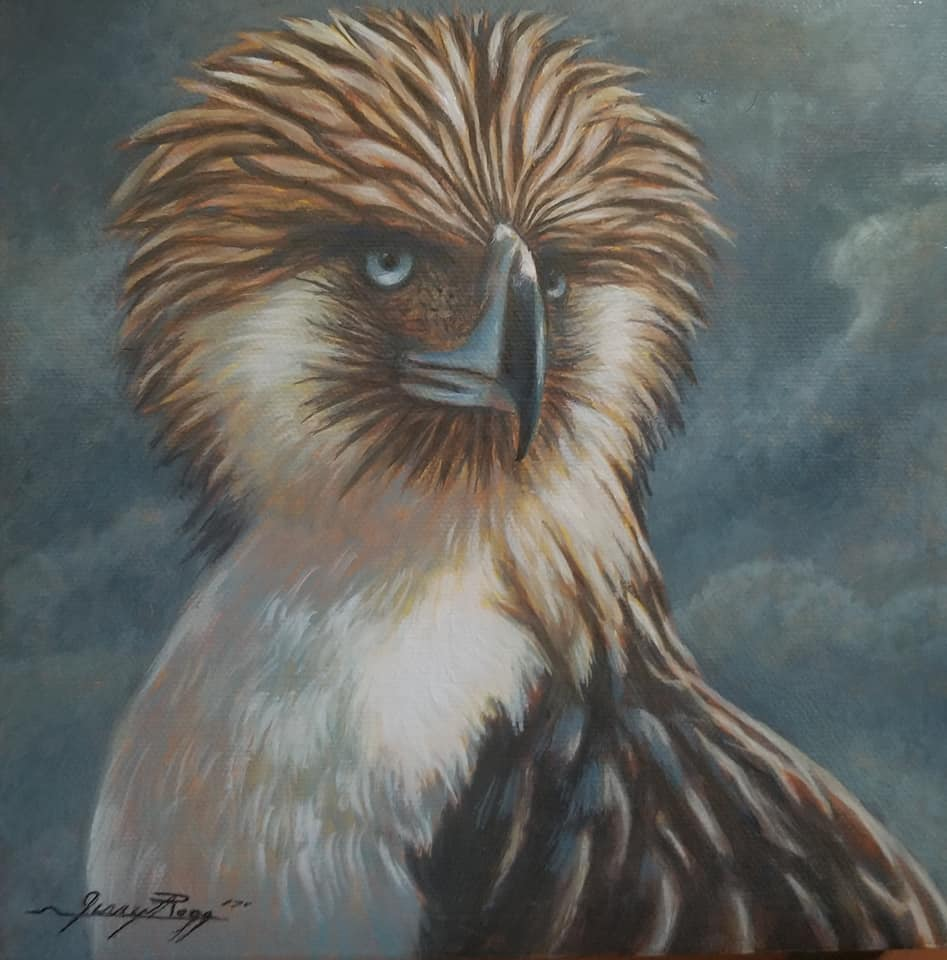 South Philippine Hawk Eagle